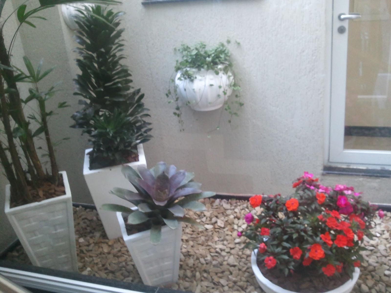 Jardim de Inverno Ficou lindo! Minha Prima adorou!