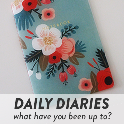 Daily Diaries