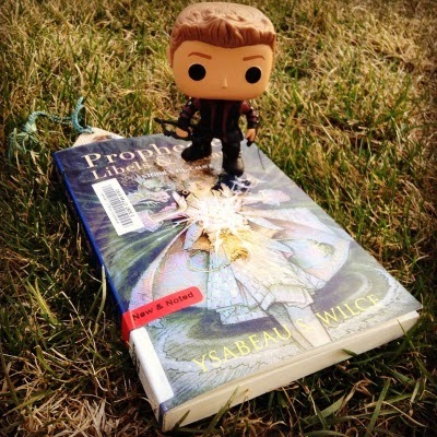 Tiny Hawkguy perches on the upper right hand corner of a trade paperback copy of Prophecies, Libels, and Dreams. The book's glossy cover features an illustration of a young woman wearing a knee-length kilt and a long coat that flares in the wind. She holds a ball of light between her upraised palms. The book lays on green and yellow grass.