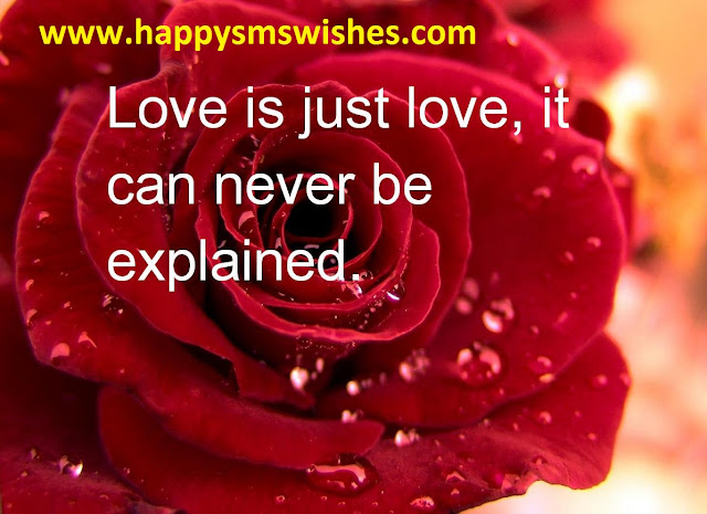 Happy Valentines Day 2016 Images - Pictures