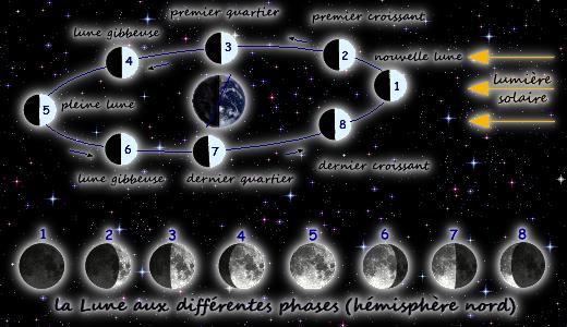 Suite calendrier lunaire 2013 les vivants comprendre savoir connaitre decouvrir - Lune montante et descendante ...