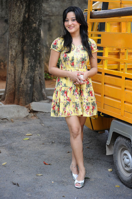 Ritu Barmecha in dress