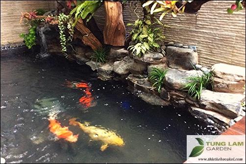 Hồ cá Koi mini đẹp, cá chép Nhật Bản