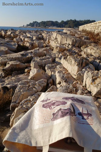 Umag Croatia Sea Wall tote bag sculptor Mary Tanner scientific drawing