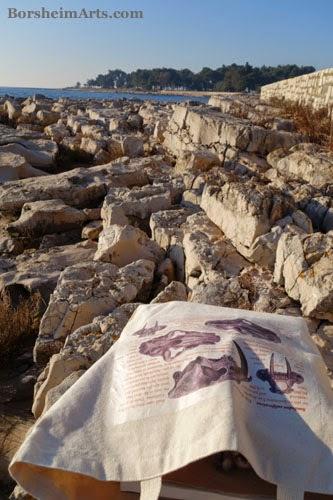 Umag Croatia Sea Wall tote bag sculptor Mary Tanner scientific drawing