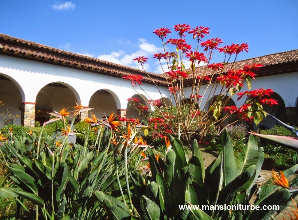 Flores de Noche Buena en el Museo de Artes e Industrias Populares de Pátzcuaro
