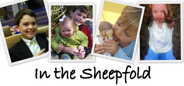 In   the   Sheepfold