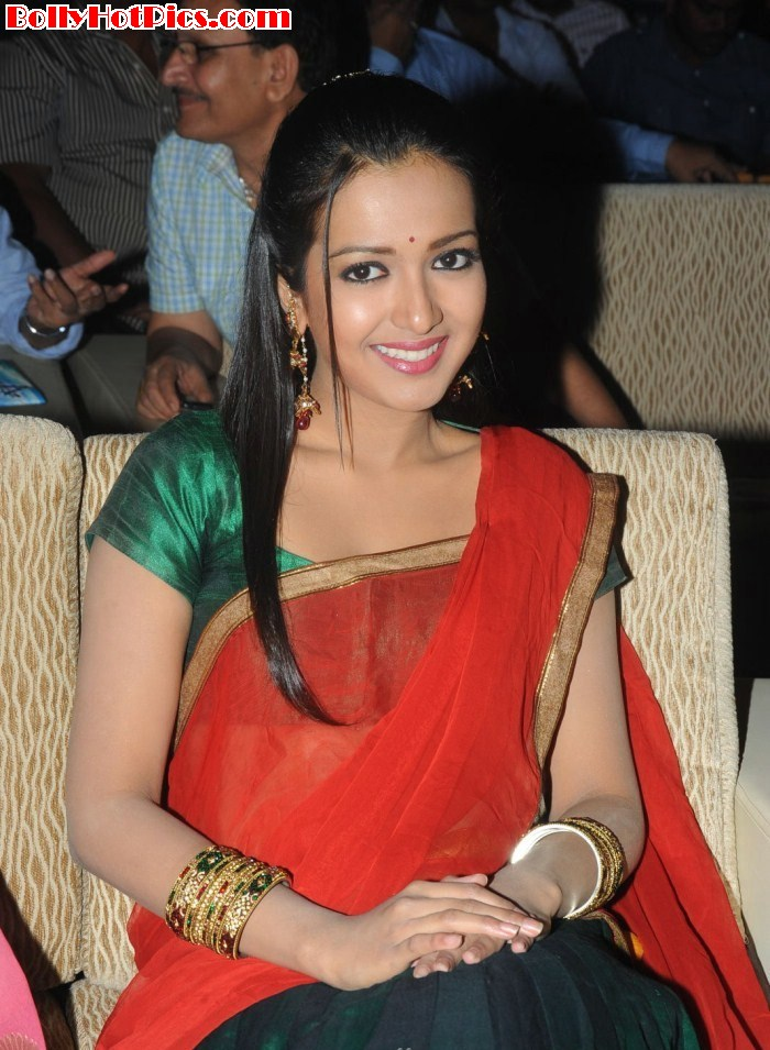 CATHERINE TRESA in Saree at Srimannarayana Audio Launch Event