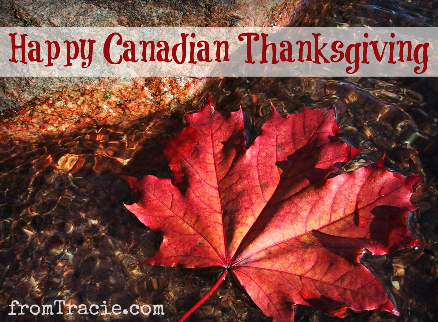thanksgiving day in canada Overview of holidays and many observances in canada during the year 2018 holidays in canada in 2018 change year thanksgiving day: national holiday: all.