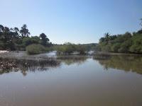Danau Tuadale
