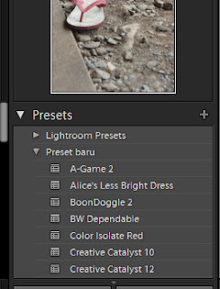 lightroom12 Cara menggunakan Photoshop LightRoom