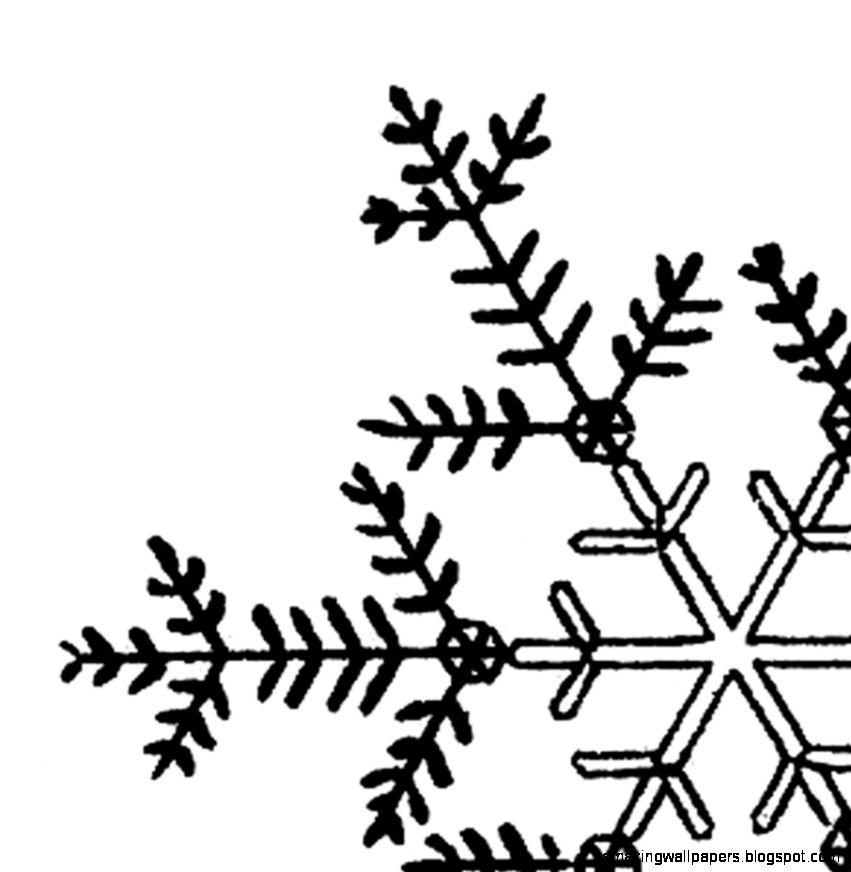 Snowflakes snowflake clipart transparent background clipart free