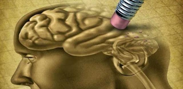 Dieta y prevención del Alzheimer