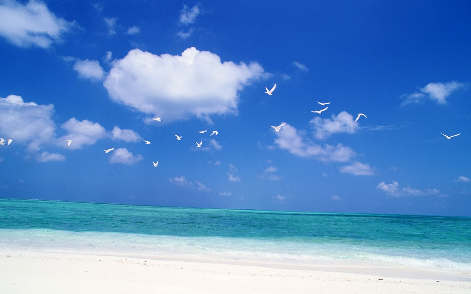 Beach Sky Wallpaper Beautiful Nature Images And Wallpapers