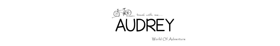 Le carnet d'Audrey