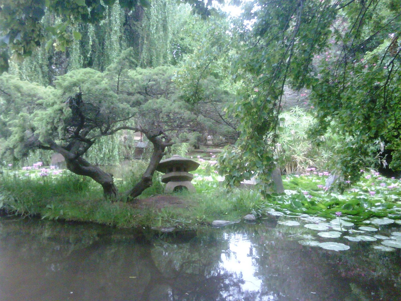 Shorin ryu taishinkan visita al parque japones de escobar for Jardin japones de escobar