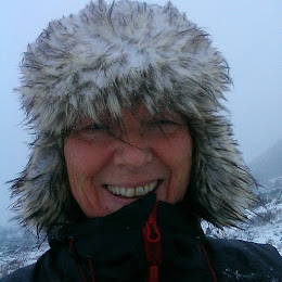 Anita Nes Ertesvåg