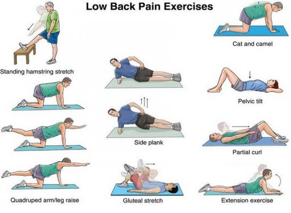 Top 10 Exercises to Strengthen Your Back and Reduce Back Pain