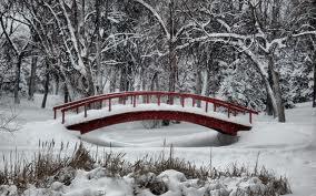 Snow and Bridge