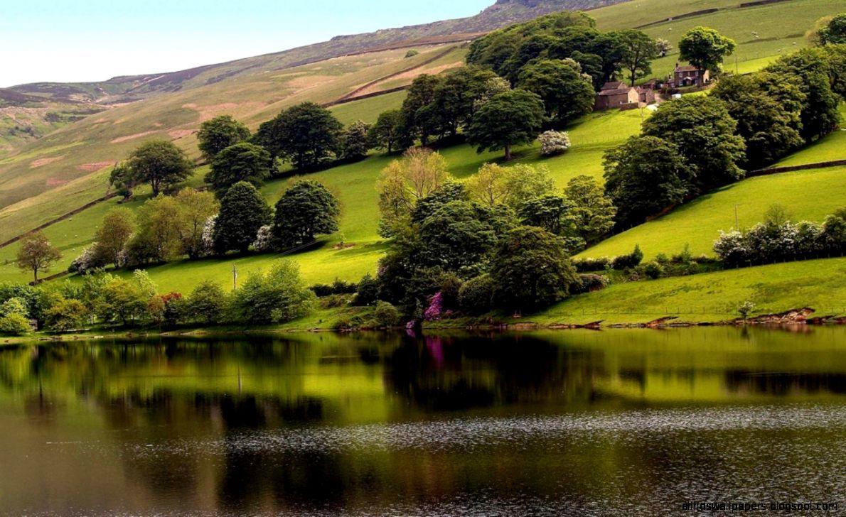 Wonderful World Scenery   HD Wallpapers Widescreen   1280x800