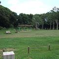 森林,代々木公園,ベンチ〈著作権フリー無料画像〉Free Stock Photos