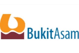Lowongan kerja November 2012 PT. Bukit Asam (Persero) Tbk, Lowongan kerja terbaru, BUMN