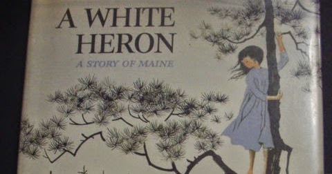 a white heron by sarah orne Sylvia as hero in sarah orne jewett's a white heron by kelley griffith, jr butwhat shall i do with my 'whiteheron'now she is written she isn't a very good magazine story, but i love her, and mean to keep herfor the.