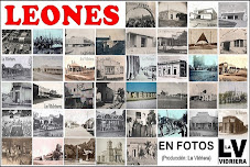 LEONES EN FOTOS