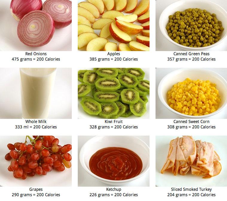 Horacio fritzler experiencias elasticas y otras glosario de palabras y acciones de la ela - Las calorias de los alimentos ...