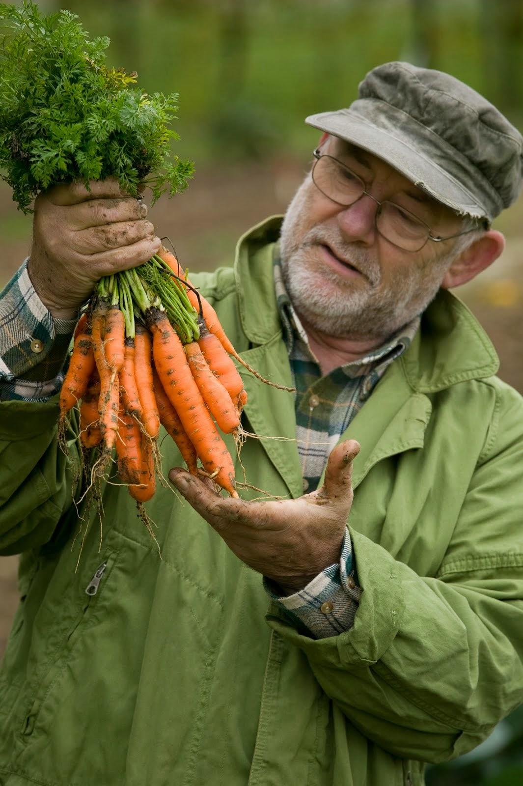 Formazione e lavoro alta scuola di giardinaggio i nuovi for Giardiniere bologna