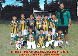 Categoria 2004-Club Atletico Aldosivi 2011