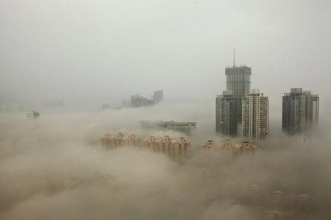 LA CONTAMINACION EN CHINA ESTA MATANDO LOS BOSQUES A UN RITMO ALARMANTE