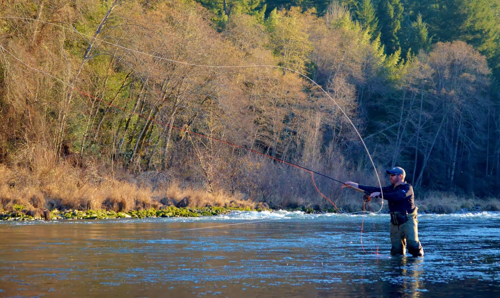 Rogue river and southern oregon fly fishing guide lts for Rogue river oregon fishing