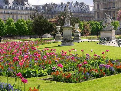 Gold in the clouds flowers in the garden of life for Paris tuileries