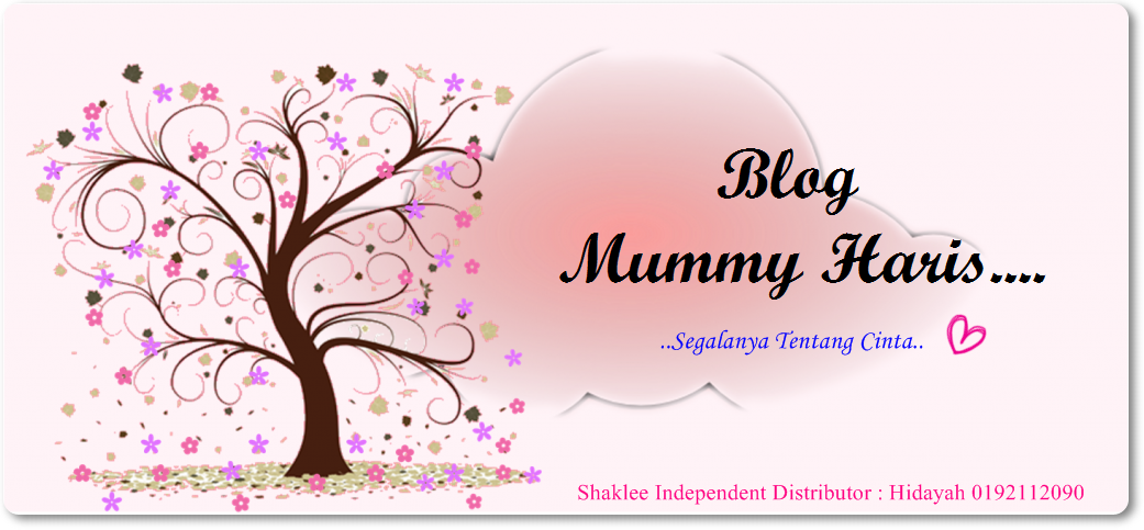 Blog Mummy Haris