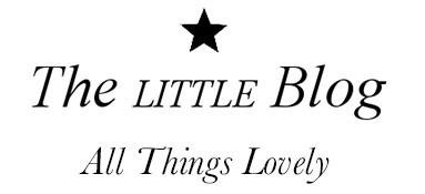 The Little Blog