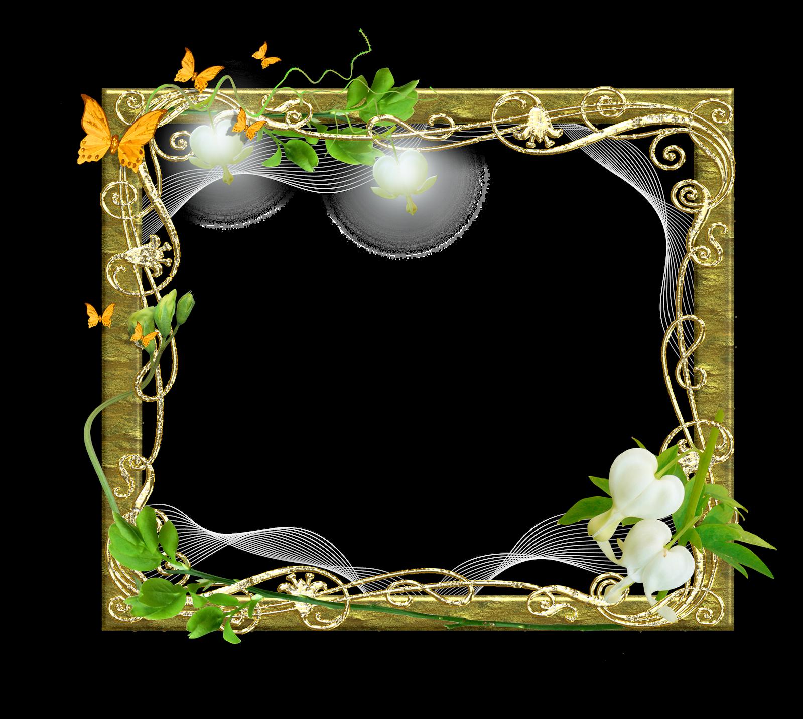 Marcos gratis para fotos marcos para fotos png florales - Adornos para fotos gratis ...