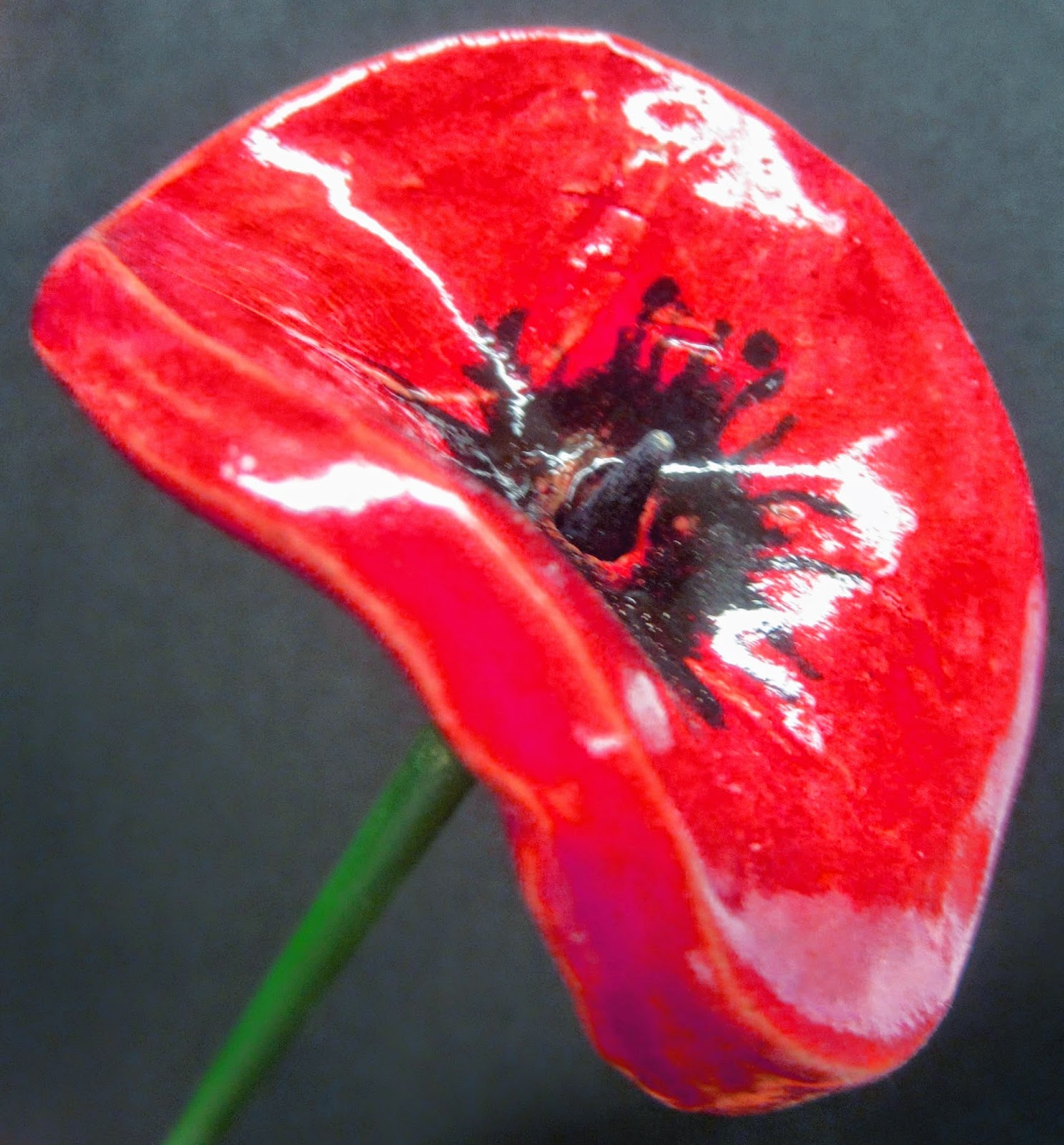 poppies, poppy, ceramic, remembrance, armistice, day, 2014