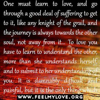 One must learn to love, and go through