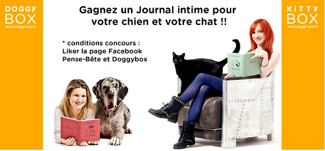 Jeu Doggybox: 10 Journaux intimes Pense-bête