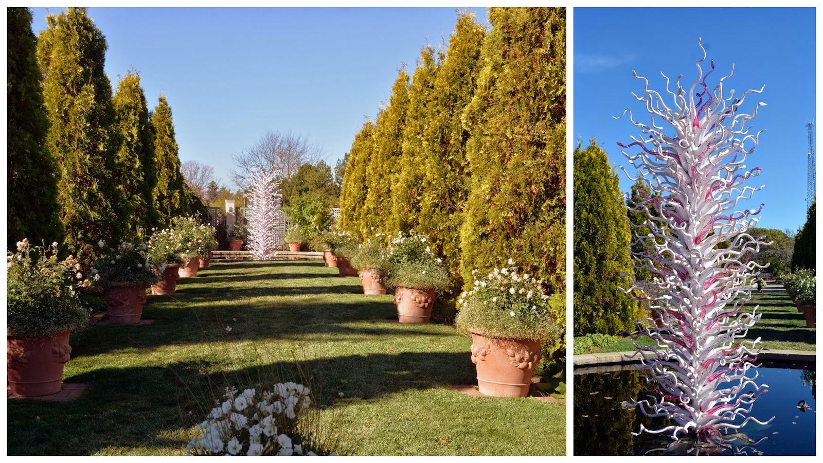 Chihuly Exhibit Denver Botanical Garden Images