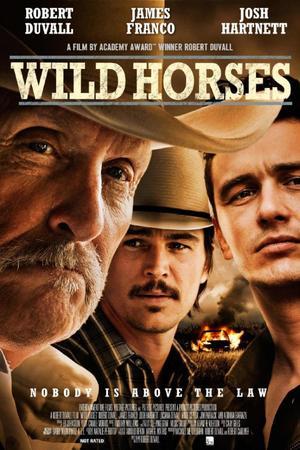 Poster Wild Horses 2015