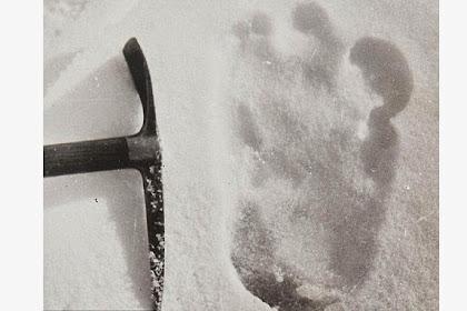 Jejak Kaki di Salju Buktikan Mahluk Misterius Yeti Ada?