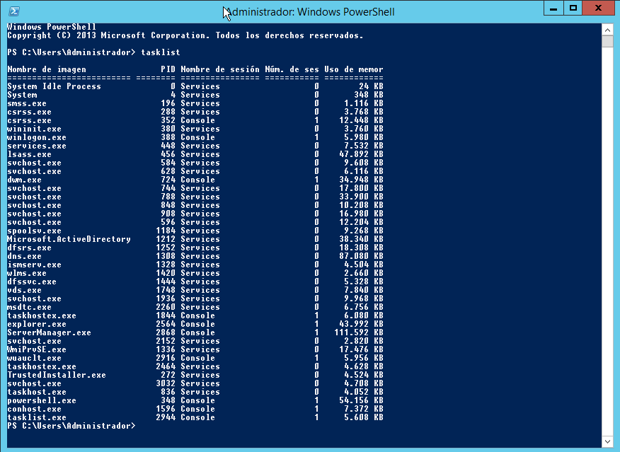Ejecutando tasklist en un entorno Windows