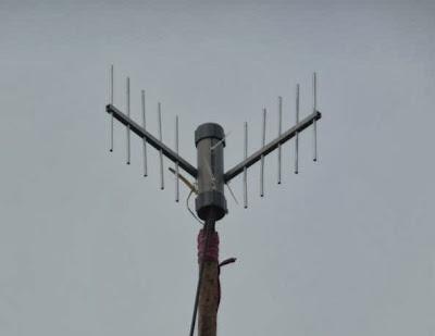 antena omni murah