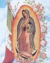 Maria Guadalupe download besplatne slike pozadine za mobitele