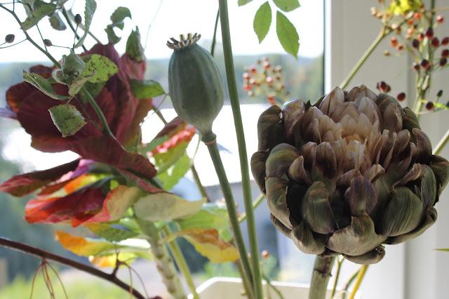 Herbstblueten Fensterbank