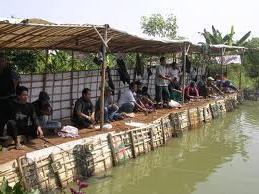 Bisnis Kolam Pemancingan