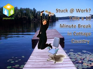 Stuck at Work? Take a 10-Minute Break in Cottage Country; image by PeapodLife
