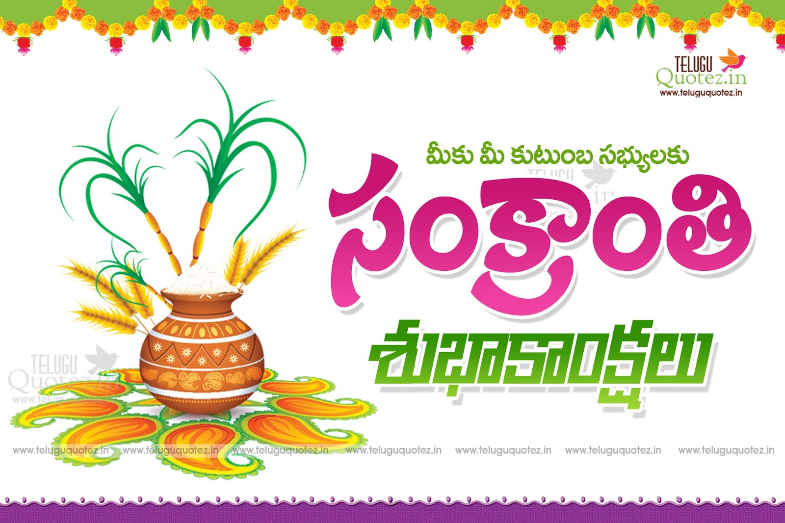 essay on sankranti in telugu